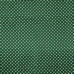 Tissu Raso Se Omnibus Pois 201604 Blanc, Vert en Soie