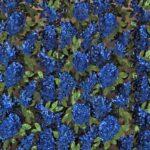 Tissu Paillettes 000800 Bleu, Noir, Vert